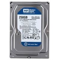 HDD WD 250G
